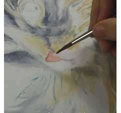 Un chat à l'aquarelle